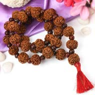 5 Mukhi Nepal Rudraksha beads mala with Red Sandalwood beads