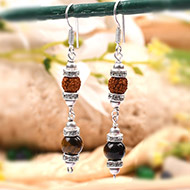Rudraksha Tiger Eye Earrings -IV