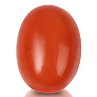 Red Italian Coral - 12.75 carats