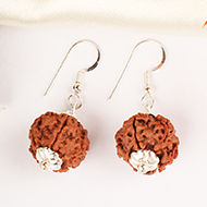 Earrings of Rudraksha Beads - Design V