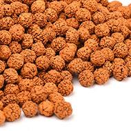 Rudraksha loose beads pack - 9mm