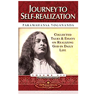 Journey to Self-realization - Vol. 3