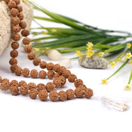 Rudraksha Mala 9mm - Semi Chikna Beads