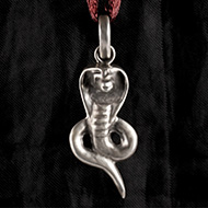 Snake Locket in Pure Silv