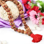 Gauri Shankar Java Kanthi - Large beads