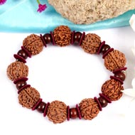 6 Mukhi Nepal Rudraksha bracelet with  Red Sandalwood beads - II