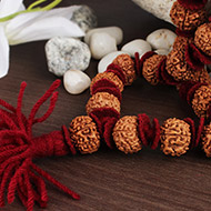 Collector 7 mukhi mala
