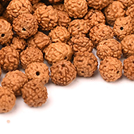 Rudraksha loose beads pack - 5mm