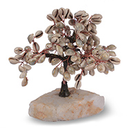 Cowrie Shells Tree