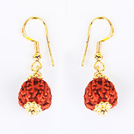 Chikna Rudraksha and Gold Earring Set with Go..
