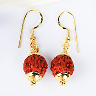 Chikna Rudraksha and Gold Earring Set with gold caps - 11mm
