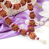 5 mukhi Nepal Rudraksha beads mala with Sphatik beads