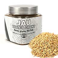Jow Barley Grains