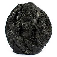 Laxmi Narasimha Shaligram Murti - VII