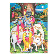 Lord Shri Krishna Photo - Large