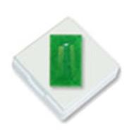 Green Jade - 6.5 Carats