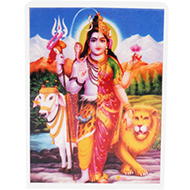 Ardhnarishvara Glittering Photo