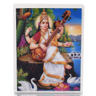 Maa Saraswati Glittering Photo