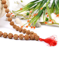 Rudraksha Mala 12mm - Semi Chikna Beads