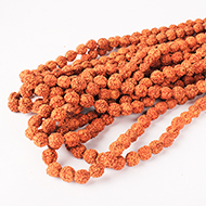 Rudraksha Mala - 11mm - Set of 9