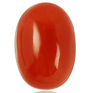 Red Italian Coral - 5 to 6 carats