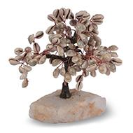 Cowrie Shells Tree