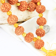 Collector 7 mukhi with Faceted Citrine mala