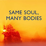 Same Soul, Many Bodies