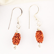 Earrings of 2 mukhi Rudraksha