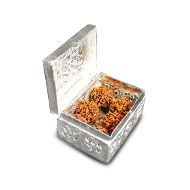 Rudraksha Chest in German Silver
