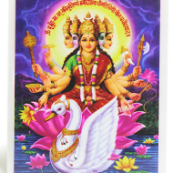 Goddess Gayatri Glittering Photo
