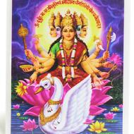 Goddess Gayatri Glittering Photo
