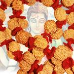 Gauri Shankar Kantha - Java - 7 mukhi- 18 mukhi