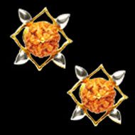 Divine Earrings - V