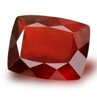 Gomed - India - 14 Carats - Cushion