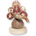 Betel Nut (Supari)  Ganesh