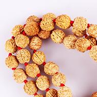 5 Mukhi Nepal Rudraksha Beads Mala - 15mm