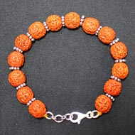 Punch Mukhi Rudraksha Bracelet - Chikna Bead) - VII