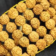Rudraksha Multi Beads Bracelet