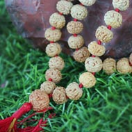 Rare 7 mukhi Mahalaxmi mala - 10mm - Smooth beads