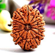 Collector Fifteen Mukhi from Nepal - VI
