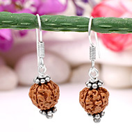 Earrings of Semi chikna Rudraksha Beads - Design III