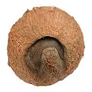 Ekakshi Nariyal (One eyed Coconut)