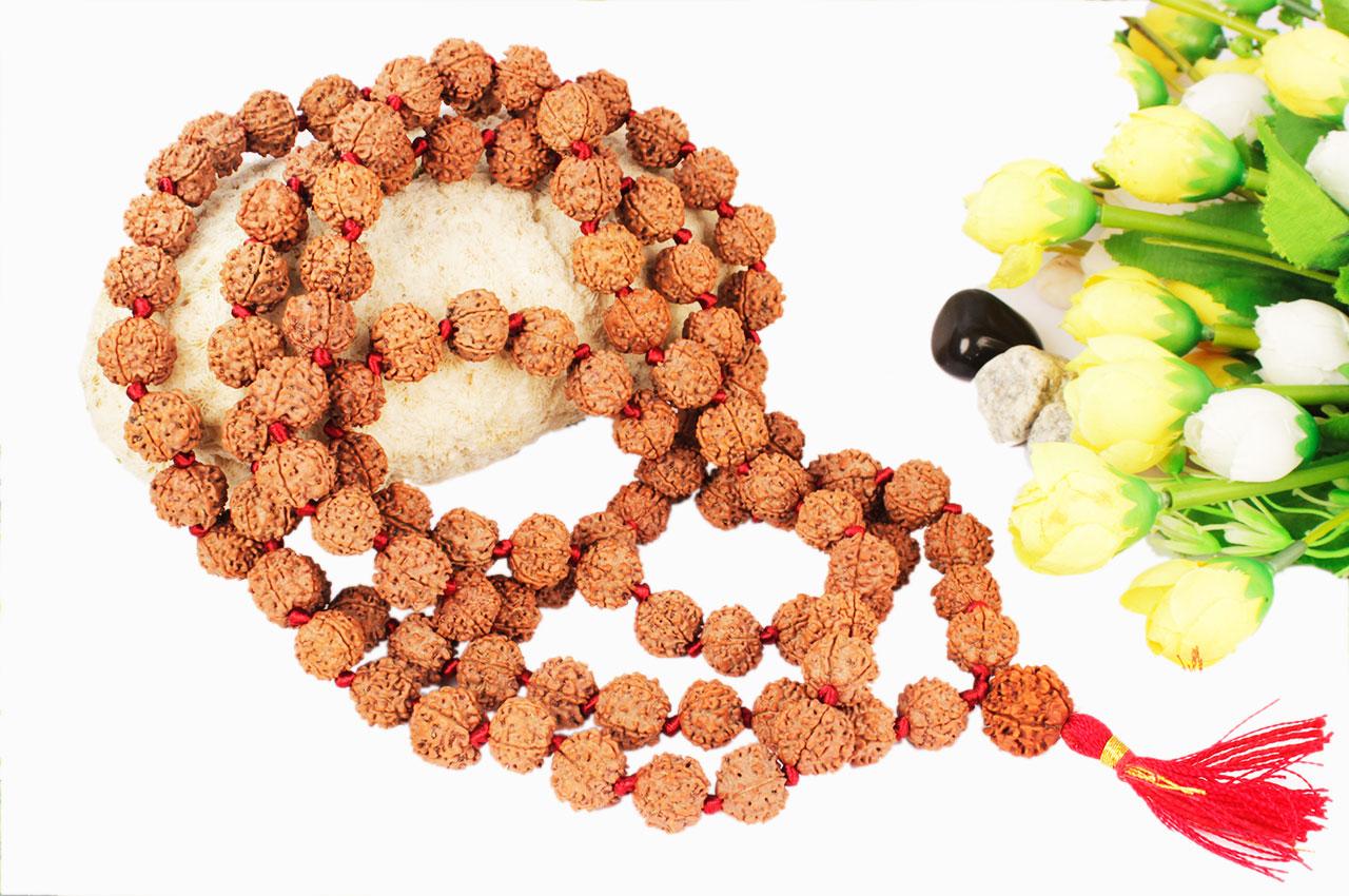 5 mukhi Rudraksha mala