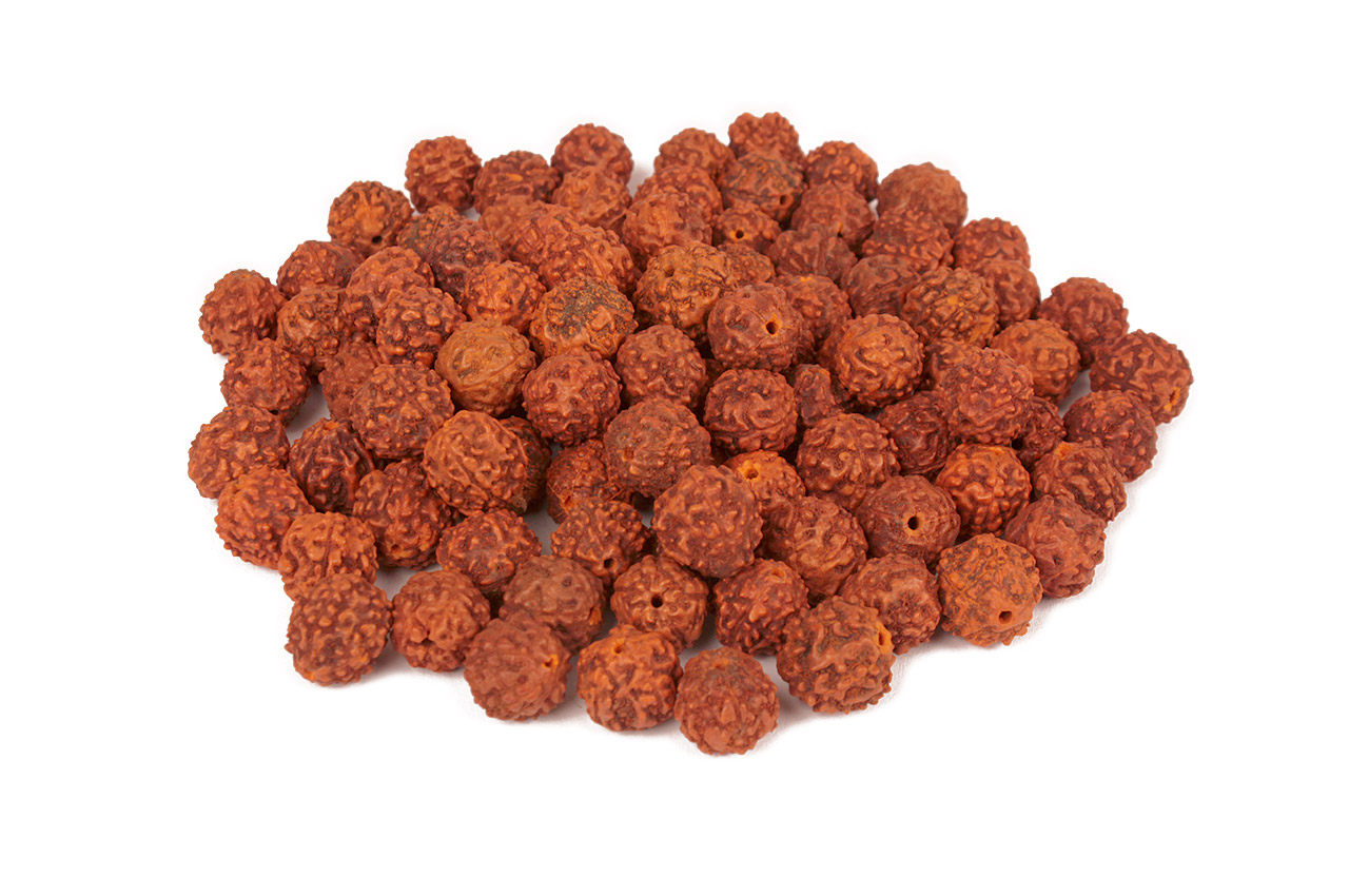 Rudraksha loose beads pack - 13mm