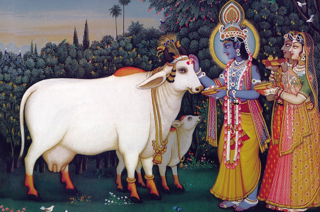 Cow Donation - Gau Dan
