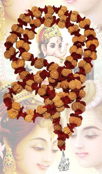 Gauri Shankar Mala Java - 6 mukhi - 19 mukhi
