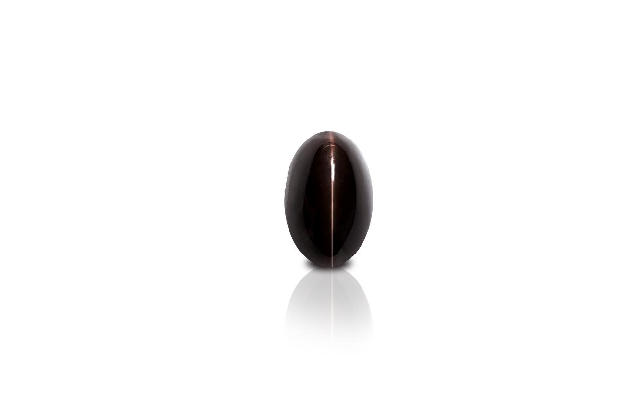 Black Cats Eye - 4.50 carats