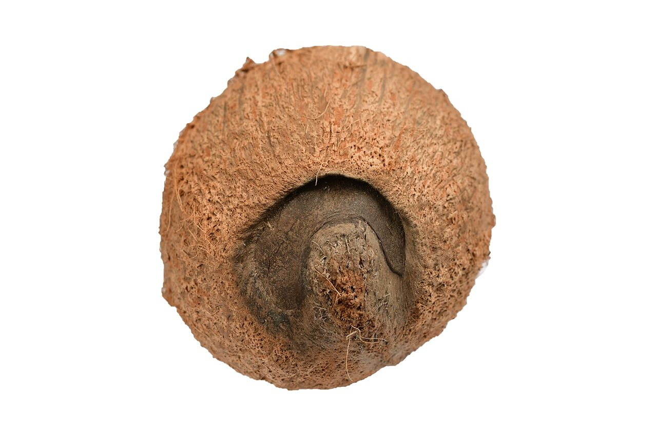 Ekakshi Nariyal (One eyed Coconut)