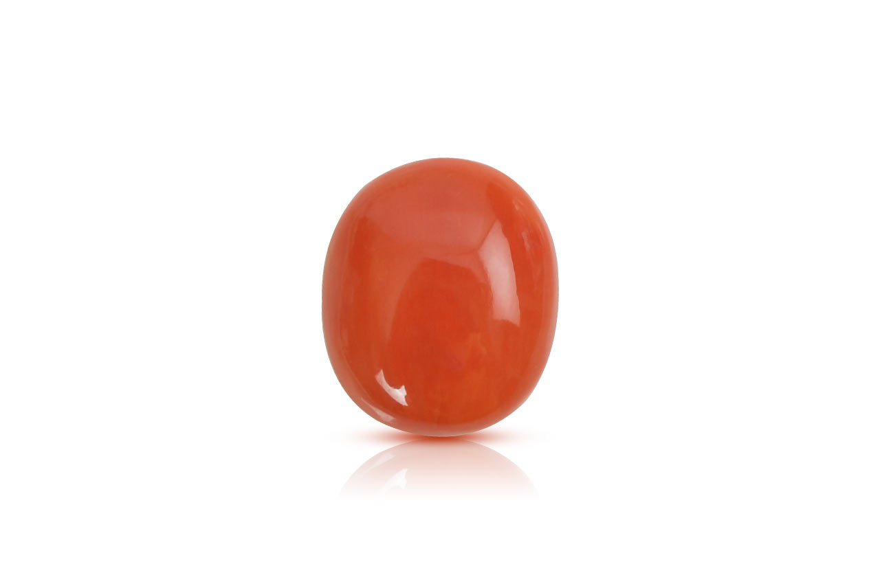 Red Japanese Coral - 11.35 carats
